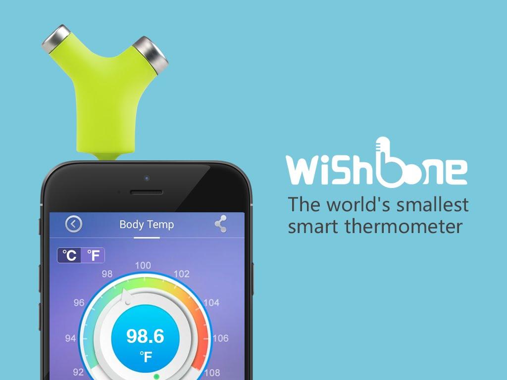 termometro wishbone