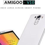 Amigoo V10