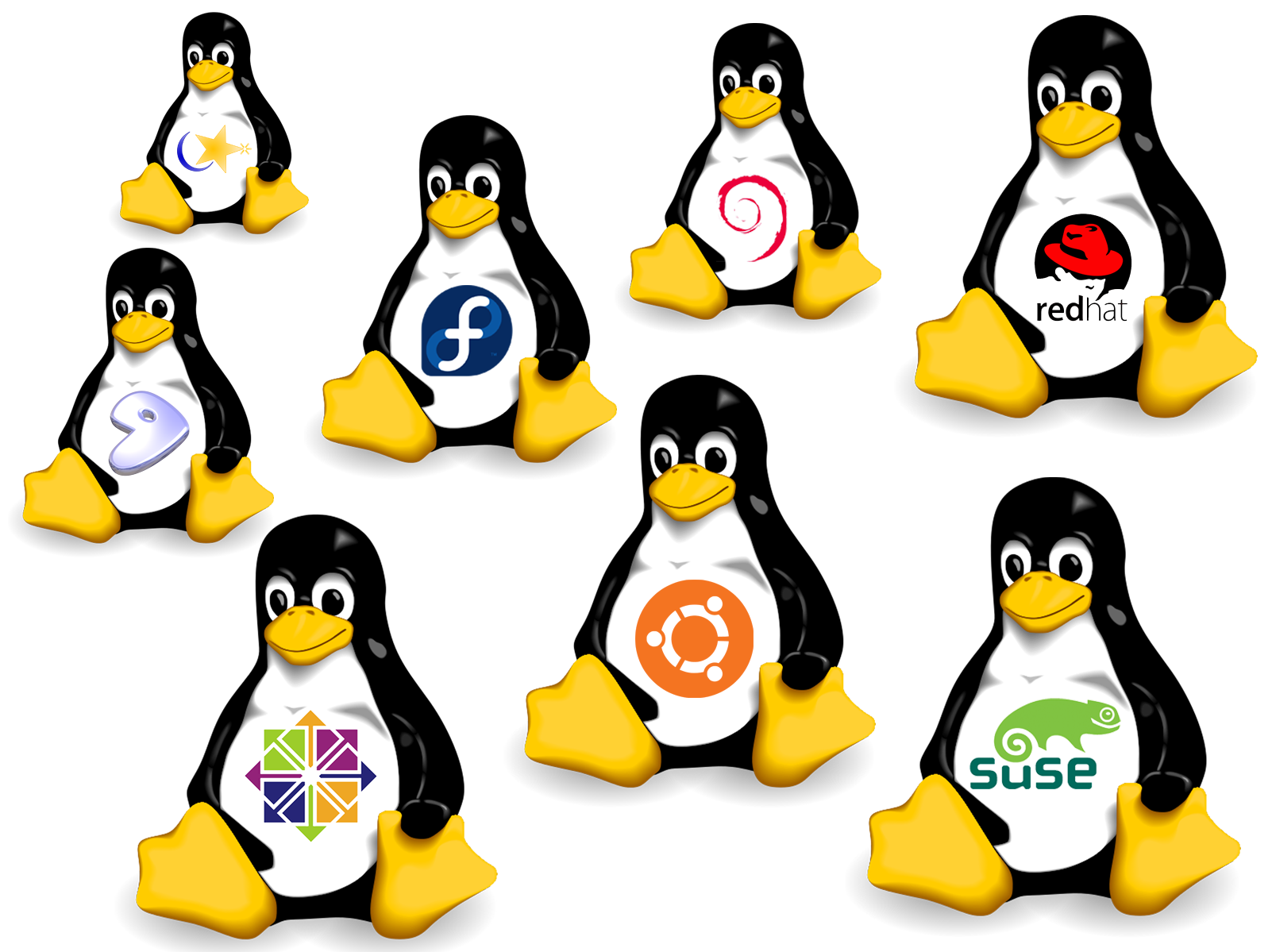 Linux caddy para portatil victsing
