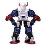 XYZ Robot Bolide