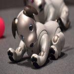 Perro robot Aibo de Sony