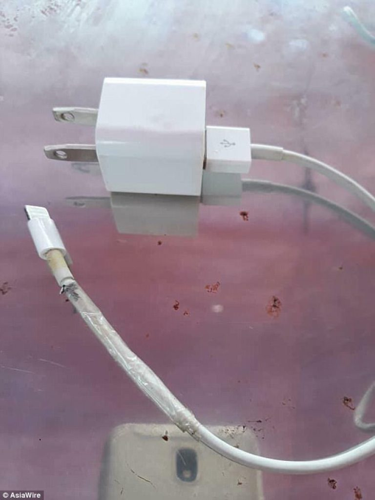 cable de iPhone