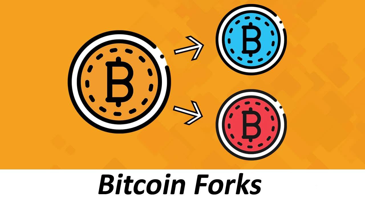 Bitcoin Forks - Qué son las bifurcaciones del blockchain