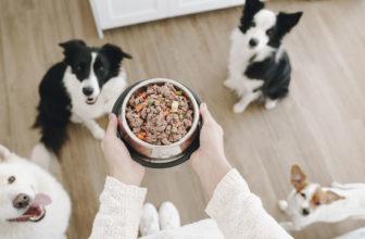 DogfyDiet, ahora también se puede pedir comida online para nuestro perro