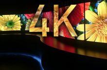 2014, el desembarco del 4K