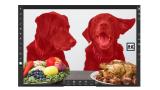 Adobe actualiza Photoshop para iPad – Ahora con Seleccionar Sujeto
