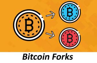 Bitcoin Forks, ¿Qué son las bifurcaciones del blockchain?