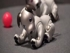 Perro robot Aibo de Sony, llega de una nueva versión