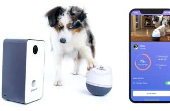 PupPod Rocker, el nuevo juguete interactivo para perros
