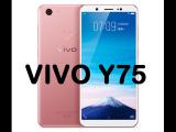 Vivo Y75, un nuevo smartphone con reconocimiento facial
