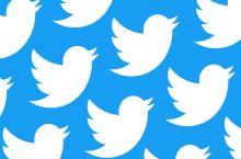 Respuestas a un tweet: ¿quién quieres que pueda dar su voz?